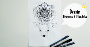 Mandalas & animaux @ L'atelier de No Working