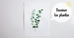 Dessiner les plantes @ L'atelier de No Working